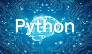 代写Python – 找代写python编程的公司怎么找 – 代写麻烦么